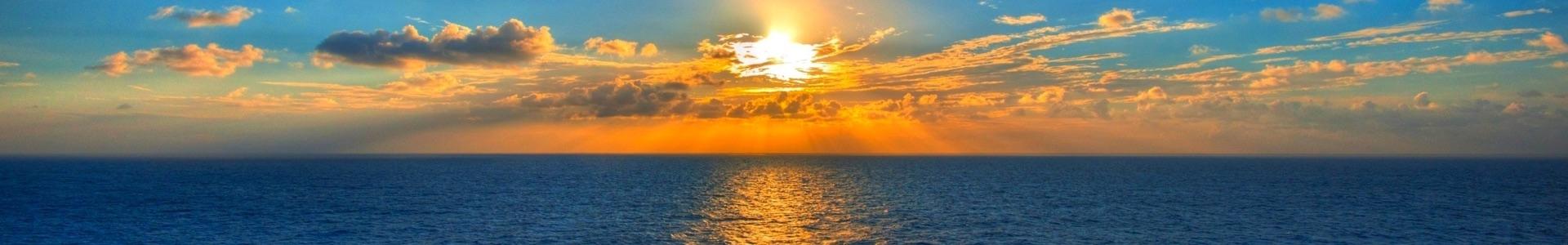 Georgia Sea Banner