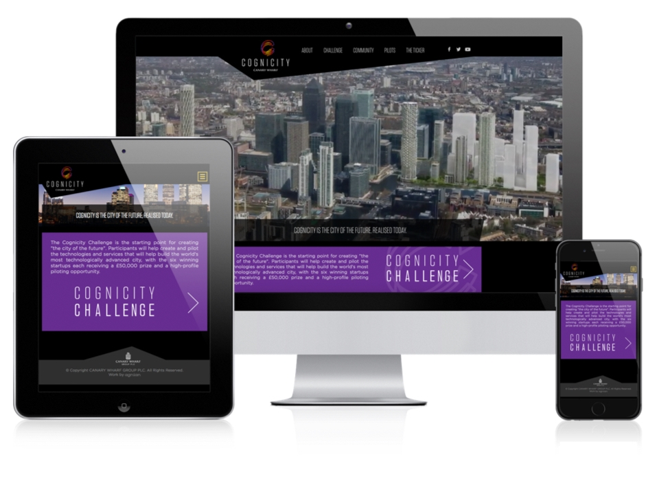 Cognicity - Mobile Layout